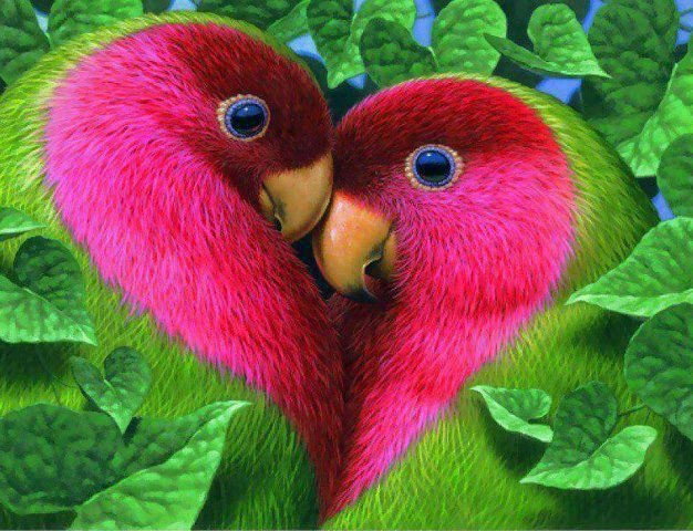 Coup de coeur <3 dans Citations et émotions en images 936795_523947347651572_48198879_n